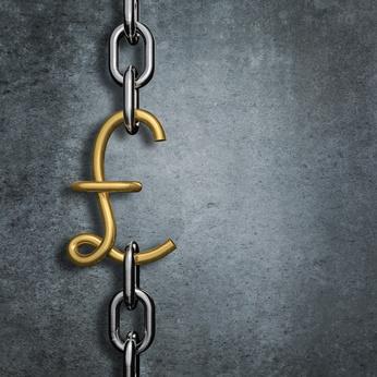 Chain link pound