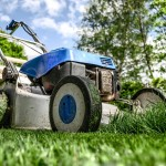 The Ultimate Guide to Creating the Perfect Lawn for Less