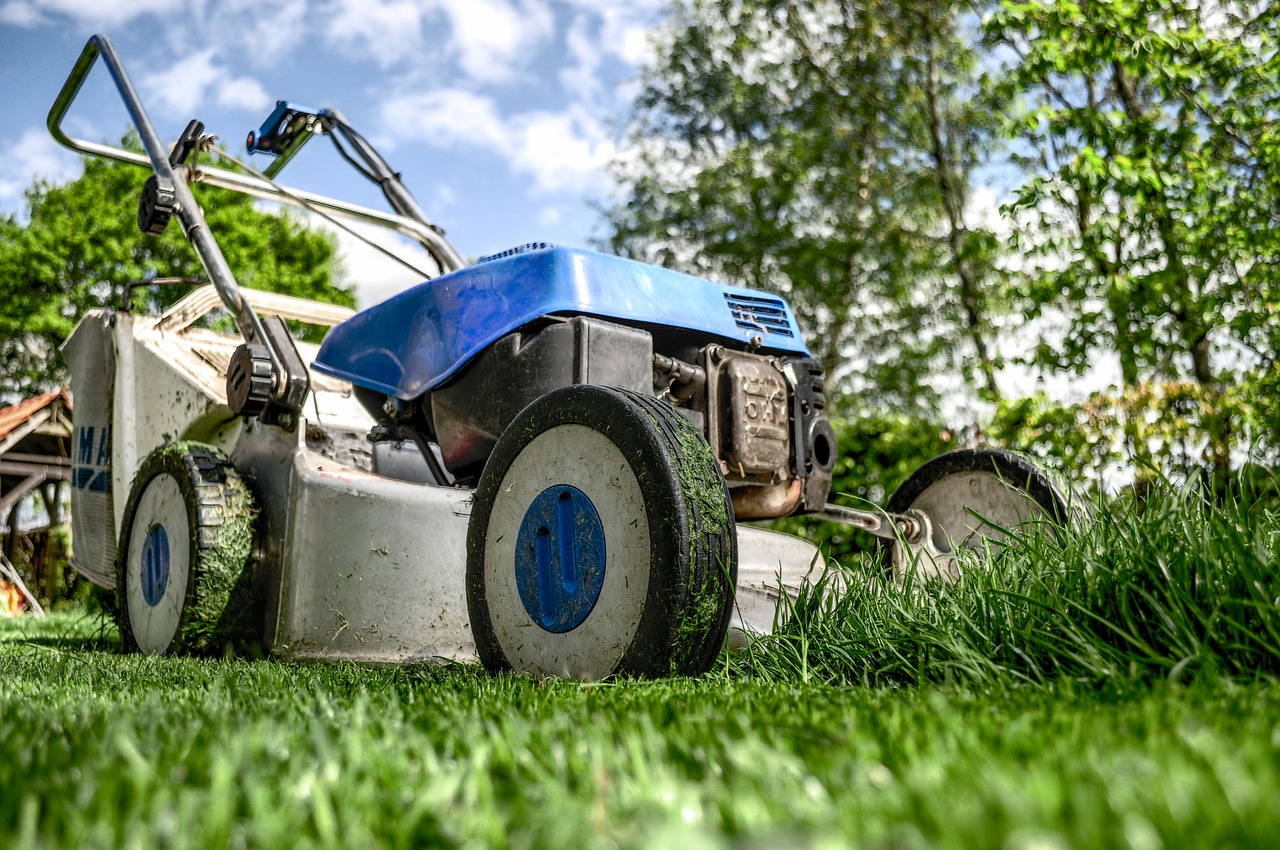 garden lawn and lawnmower